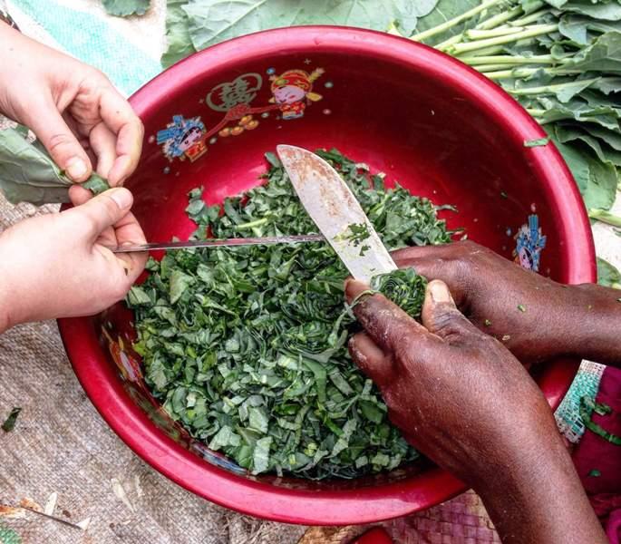 volunteer in Uganda and cook fresh greens from the garden