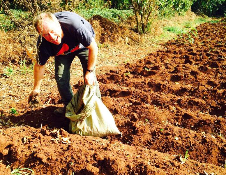 volunteer on an organic farm in Uganda. plant seeds, clear weeds, and watch everything grow!