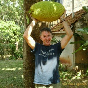 Jackfruit in Uganda - in season all year long. Its a super food.