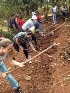 volunteers gardening in Uganda