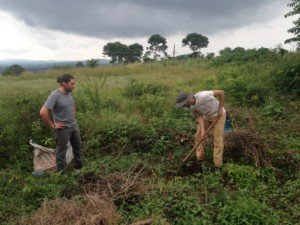 volunteer in africa and work on farms, in clinics, women empowerment, primary school teachering