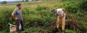 Volunteer on an organic farm in Africa. Work hard, experience culture, meet amazing people.