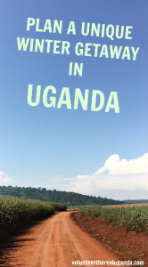 Plan a unique winter vacation. Volunteer in Uganda