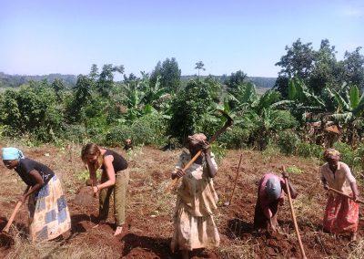 organic farming in Uganda